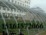 湖南永州宁远县农用大棚镀锌管农用大棚骨架配件