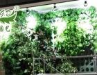 植物墙 生态墙 景观墙 植物墙加盟