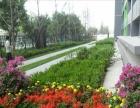 《北京像素优质开间》3.2挑高,出门就是地铁,嘎嘎方便。