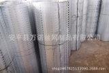 河北专业的卷板冲孔网服务商好用的卷板冲孔网厂家