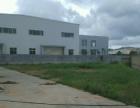 龙池全新标准厂房独门独院 10000平标准厂房