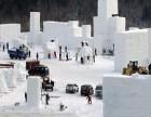 十方文化:专注冰雪艺术,助力冰雪产业发展