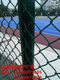 天津体育场围网 体育场防护网 篮球场围网厂