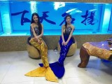 广州本地海洋生物展出租 荔湾区美人鱼表演一手资源租赁