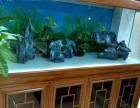全昆明鱼缸鱼池洗濯鱼缸维修