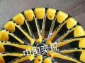 轮毂翻新修复改色、喷镀、彩绘