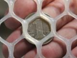 安平博展厂家生产塑料平网 塑料养殖网 规格齐全