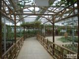 阳光房 小温室建设