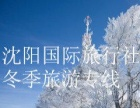沈阳国际旅行社省内温泉滑雪一日两日游、
