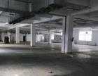 黄圃大雁工业区 二楼标准厂房1500平方招租