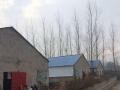 个人5000平方养猪厂房出租,用途不限。