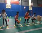 万宇体育篮球培训