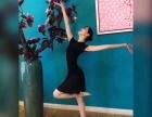 西安新晔舞蹈专业成人少儿零基础舞蹈培训