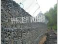 镀锌格宾网加筋格宾网生态格宾网安平格宾网pvc石笼网中石厂家