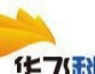 中山网站优化/推广