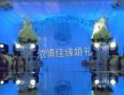 淄川婚庆公司策划,精心一对一打造完美婚礼一条龙服务