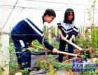 东莞研学旅游一个人小朋友边学边玩的研学农场
