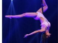 银川钢管舞培训,成人零基础舞蹈培训,钢管舞表演培训