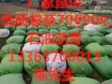 长春销售70 袋装沥青多少钱一吨