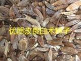 安国市元泰种子经营部(在线咨询)|肥城药材种子|药材种子信息