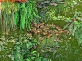阻燃仿真植物墙高级绿植墙创意室内背景装饰人造草墙厂家直销