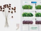 智能種植機水培培蔬菜種植機空氣凈化機除甲醛機心福地森林家
