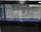 1.5米底滤鱼缸 龙缸 新乡地区定做鱼缸