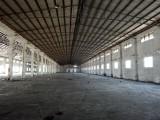丹灶金沙标准钢结构厂房出租