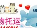 唐山永峰航空宠物托运