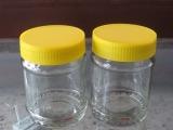 玻璃瓶厂热销时尚优质价廉玻璃调味瓶蜂蜜瓶玻璃包装容器