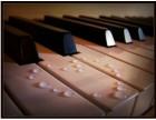 沧州买琴,学琴,练琴,绝对够专业 娟子琴行