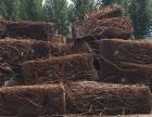 安钢废钢基地专业废钢回收