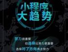 做微商城微信小程序 小平台代理 微网站找温州李白