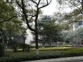 馨美家南湖广场旁南湖巴陵石化社区带暖气另送杂物间证齐