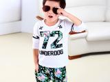 2015秋季潮范时尚韩版儿童套装 男童花朵数字长袖两件套春秋童装