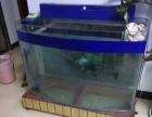 出售闲置的鱼缸