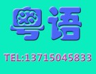 深圳龙华龙胜标准粤语培训班