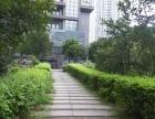 个人出售南坪商圈中心43平米带酒店租约精装公寓1室1厅轨道房