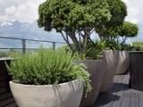 惠州样板房假花 样板房仿真花 样板房花艺 植物墙