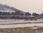 土顶 双阳区土顶 厂房(猪舍) 8000平米