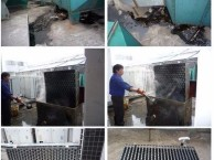 闵行区七宝镇饭店油烟机清洗 专业清洗油烟管道公司