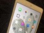 金色64g iPad mini4代转让