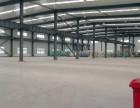 单层仓库8000平米出租 可分租
