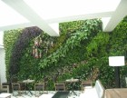福田上梅林下梅林仿真植物墙 仿真花 公司logo植物墙