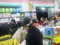 航院博美超市转让,接手营利