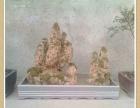 个人出售迎春花和水锈石盆景