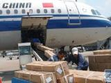 郑州航空货运 宠物托运 郑州鑫航航空货运代理有限公司