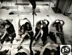 费斯舞蹈专业舞蹈培训课程课表及报名方式