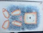 吴中区暑期美术班 儿童画 漫画 素描小班教学