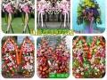 如东海门鲜花店情人节鲜花速递玫瑰花预订开业花篮配送